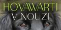 Hovawarti v Nouzi - banner 120x60